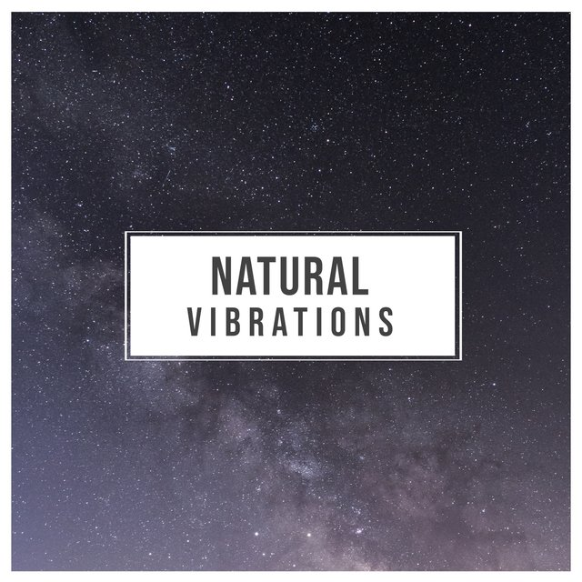 # 1 Album: Natural Vibrations