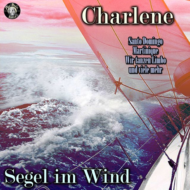 Segel im Wind