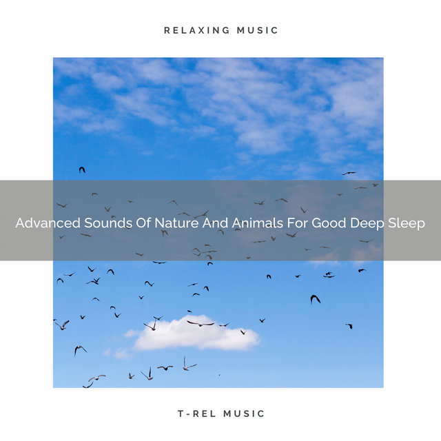 Advanced Sounds Of Nature And Animals For Good Deep Sleep