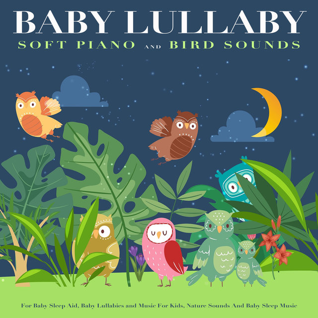 Baby Lullaby: Soft Piano and Bird Sounds For Baby Sleep Aid, Baby Lullabies and Music For Kids, Nature Sounds And Baby Sleep Music