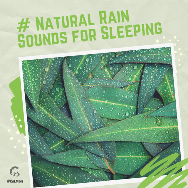 # Natural Rain Sounds for Sleeping