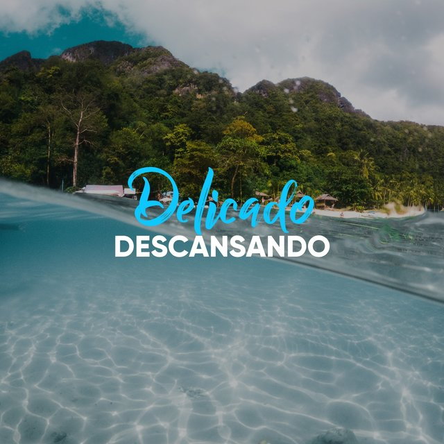 # 1 Album: Delicado Descansando