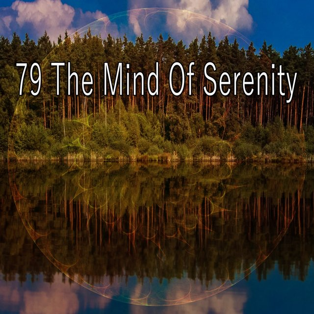 79 The Mind of Serenity