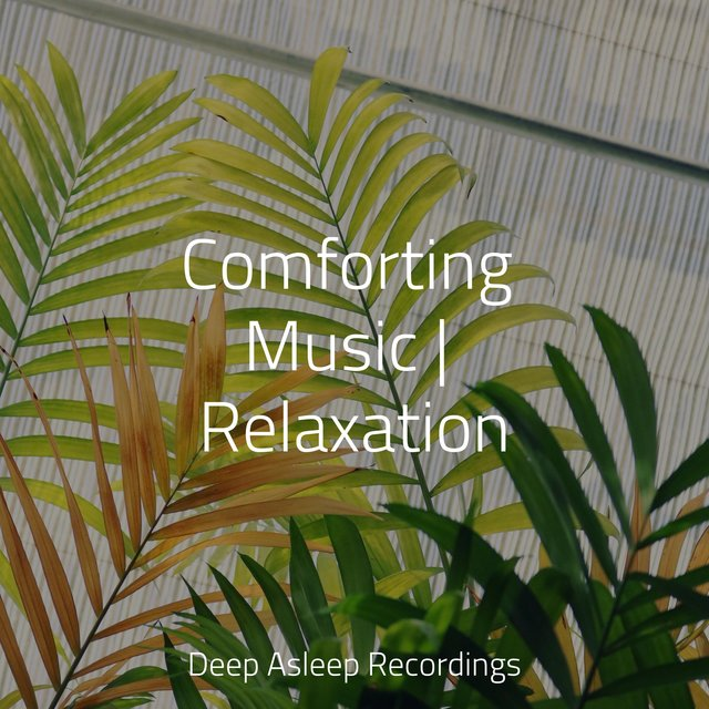 Comforting Music | Relaxation