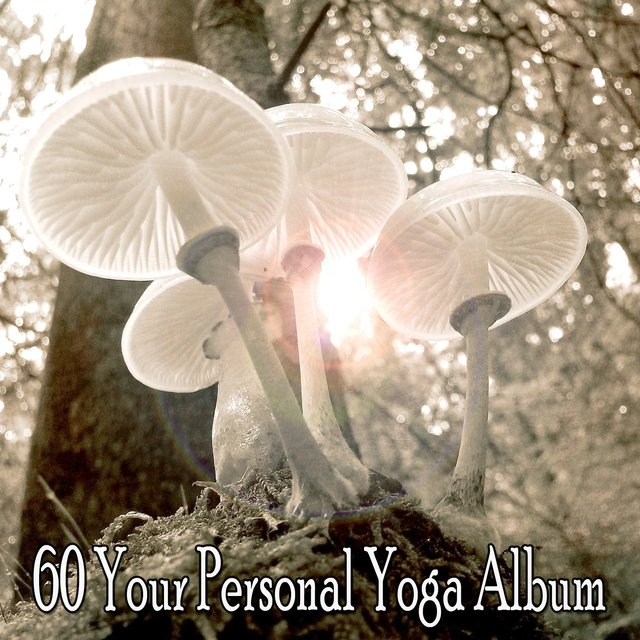 60 Your Personal Yoga Album