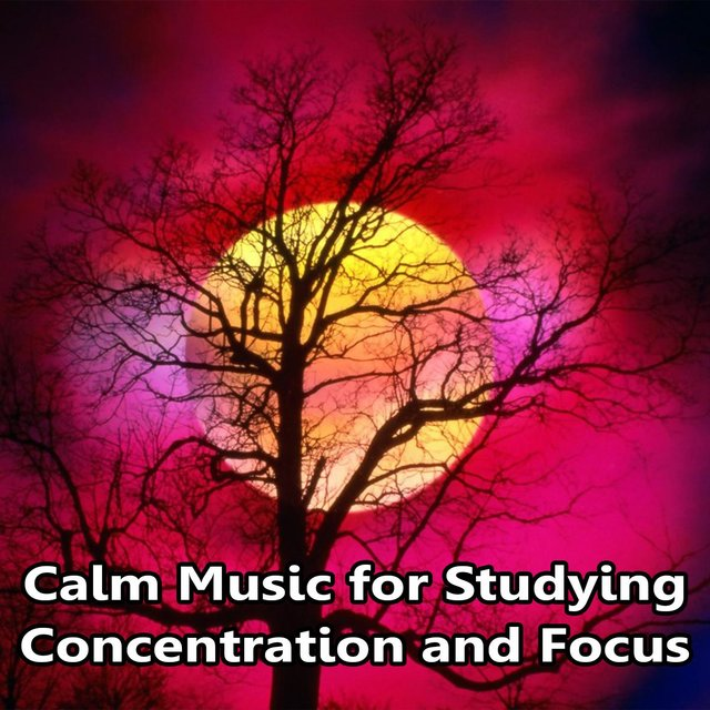 Calm Music for Studying, Concentration and Focus