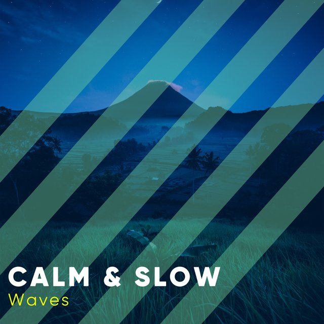 # 1 Album: Calm & Slow Waves