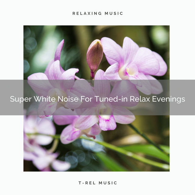 Super White Noise For Tuned-in Relax Evenings
