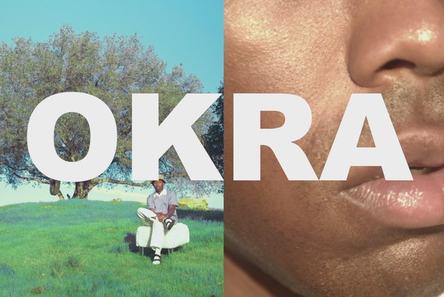 OKRA (Official Video)