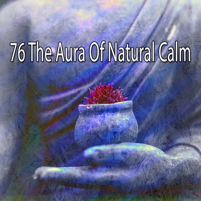 76 The Aura of Natural Calm