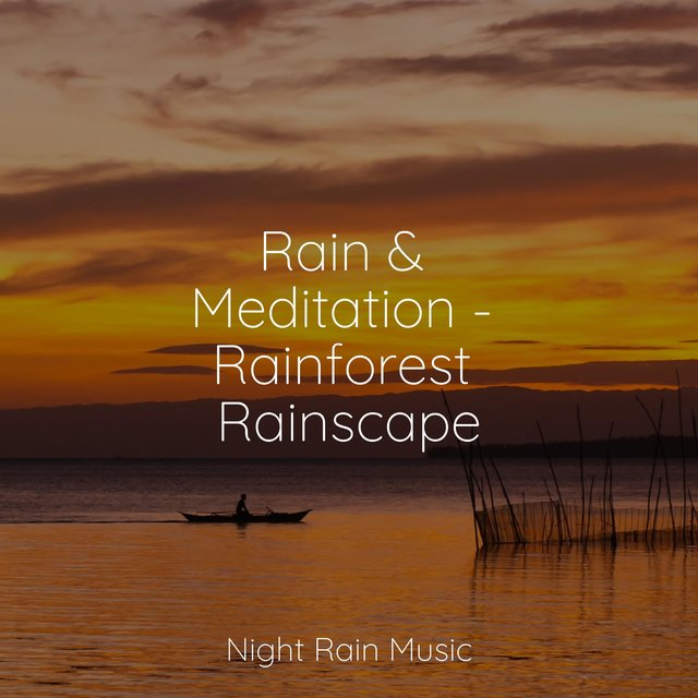 Rain & Meditation - Rainforest Rainscape