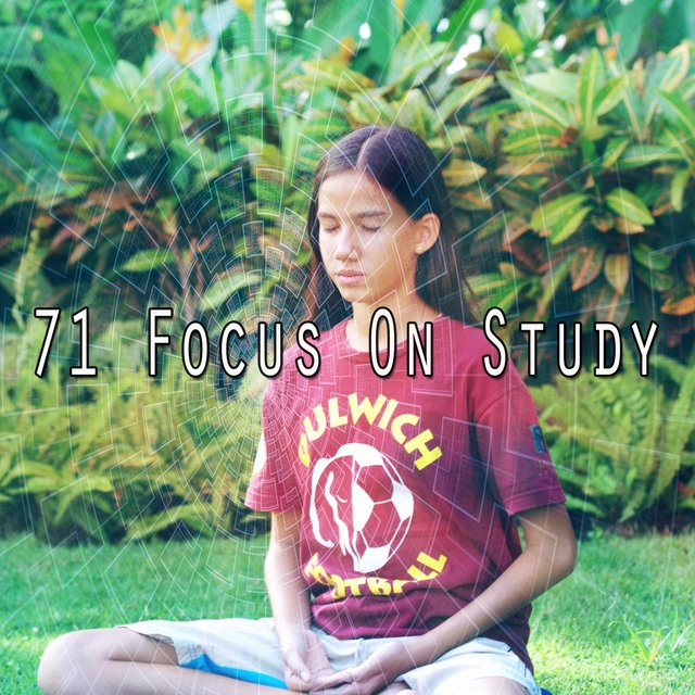 71 Focus on Study