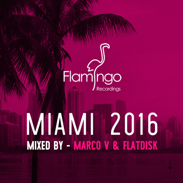 Flamingo Miami 2016