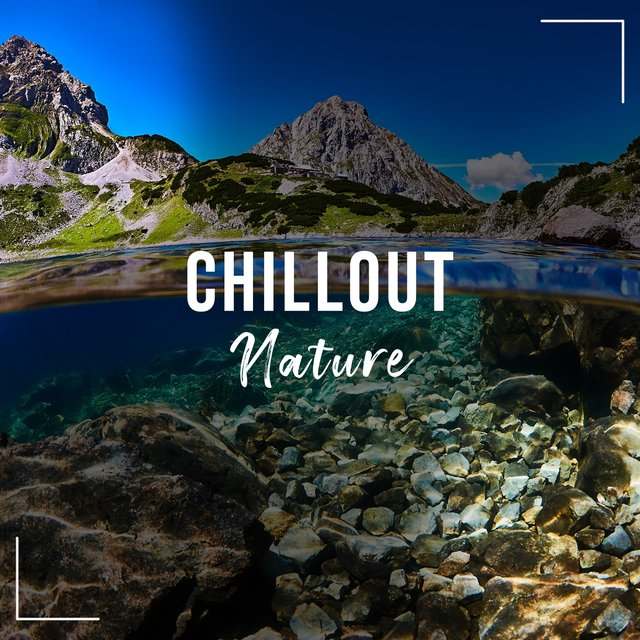 # 1 Album: Chillout Nature