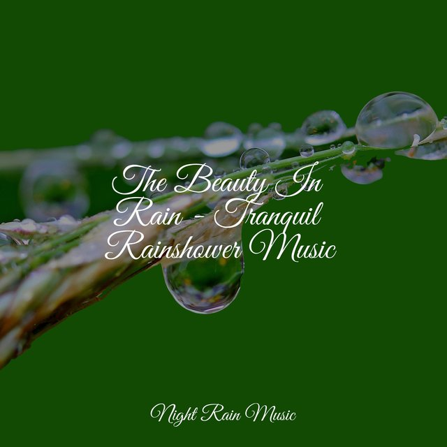 The Beauty In Rain - Tranquil Rainshower Music