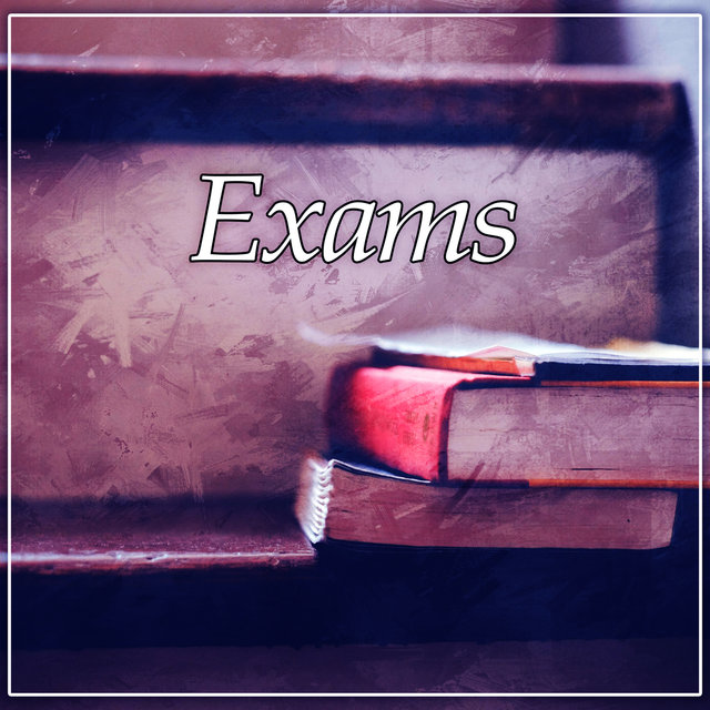 Exams – Good Book, Deep Focus, Concentration, Spotlight, Nice Time wit Book, Interesting Book