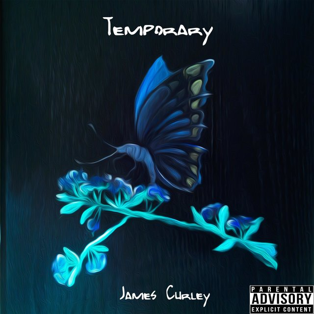 Cover art for album Temporary by James Curley