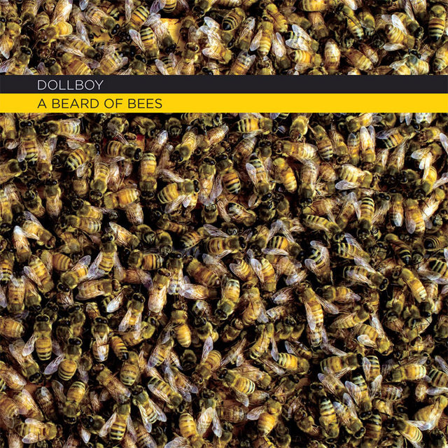 Cover art for album A Beard of Bees by Dollboy