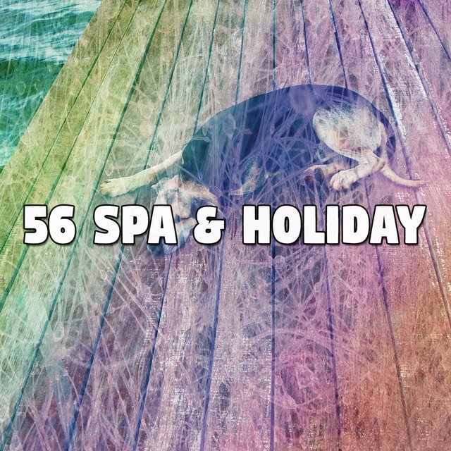56 Spa & Holiday