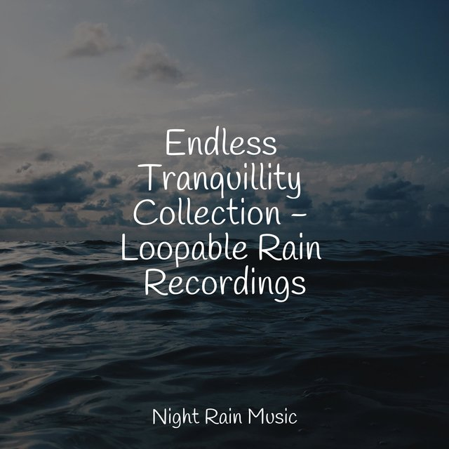 Endless Tranquillity Collection - Loopable Rain Recordings