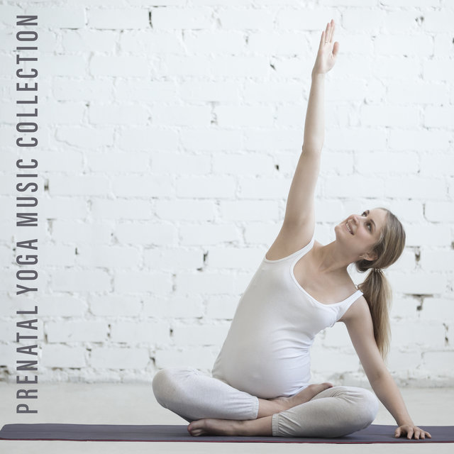 Prenatal Yoga Music Collection - Mesmerizing Sounds of Nature and More for Women in Advanced Pregnancy, Physical Change, Stretching and Breathing Exercises, Easier Labor, Calm Mommy and Baby