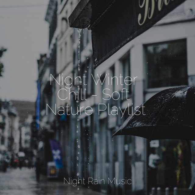 Night Winter Chill - Soft Nature Playlist