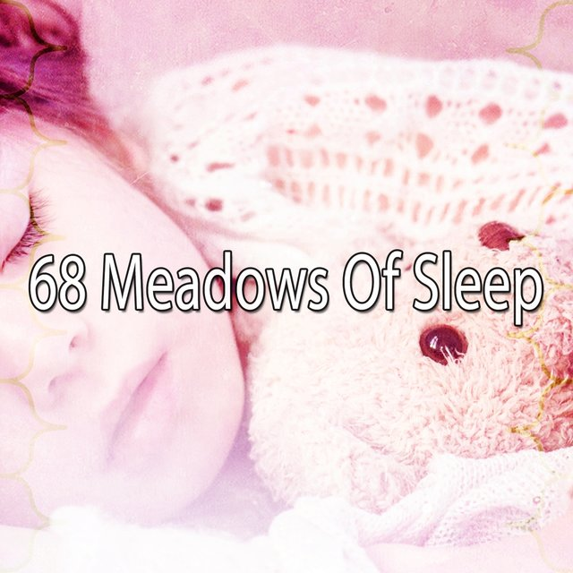 68 Meadows of Sle - EP