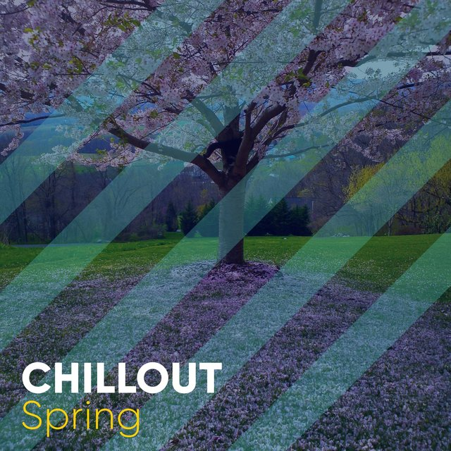 # Chillout Spring