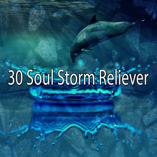 30 Soul Storm Reliever