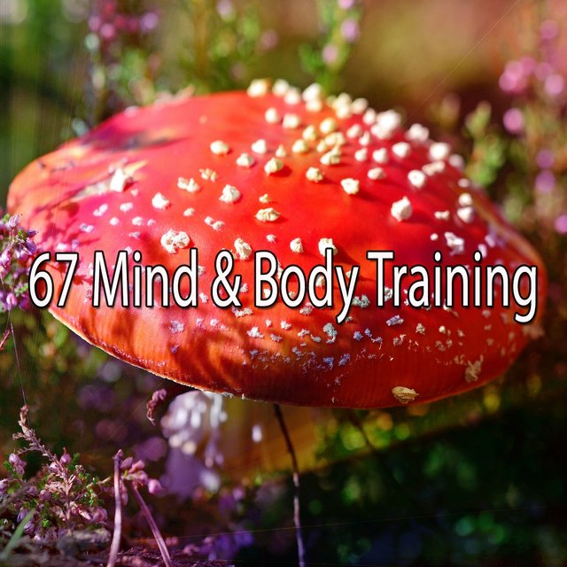 67 Mind & Body Training