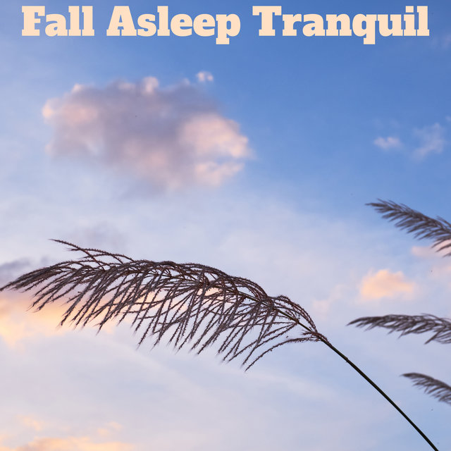 Fall Asleep Tranquil - Calm New Age 2020, Bedtime Music, Best Sleep Aid, Deep Sleep