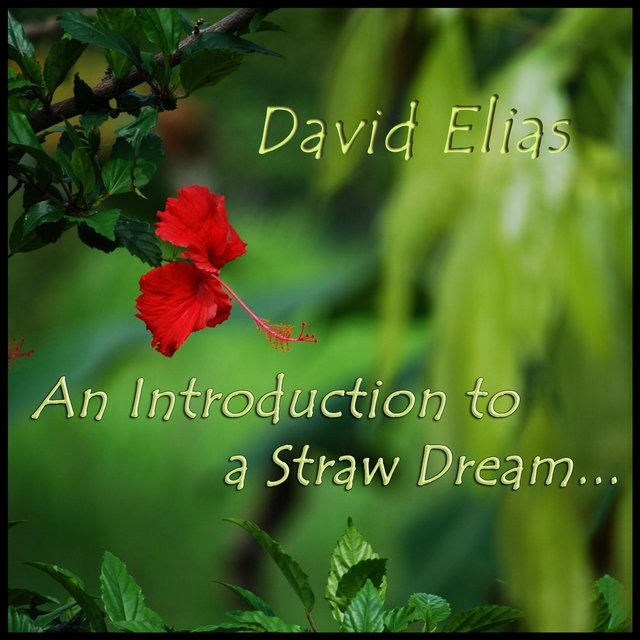 An Introduction to a Straw Dream (feat. John Caulfield & Chris Kee)