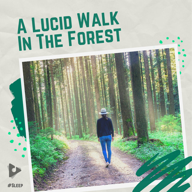 A Lucid Walk In The Forest