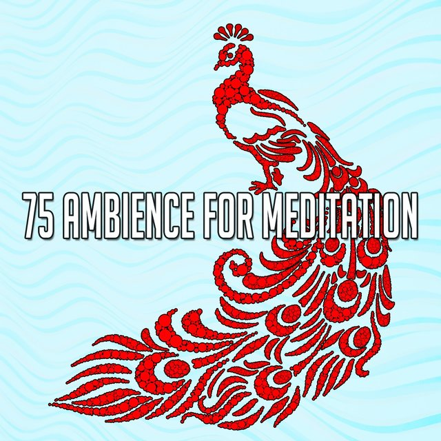 75 Ambience for Meditation