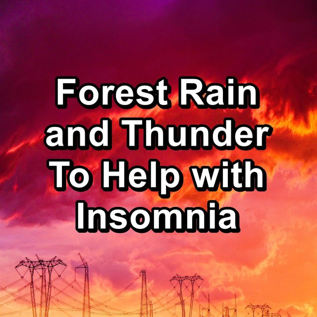 Forest Rain and Thunder To Help with Insomnia