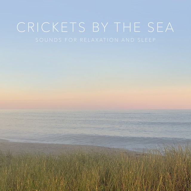 Crickets by the Sea (Sounds for Relaxation and Sleep)