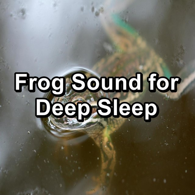 Frog Sound for Deep Sleep