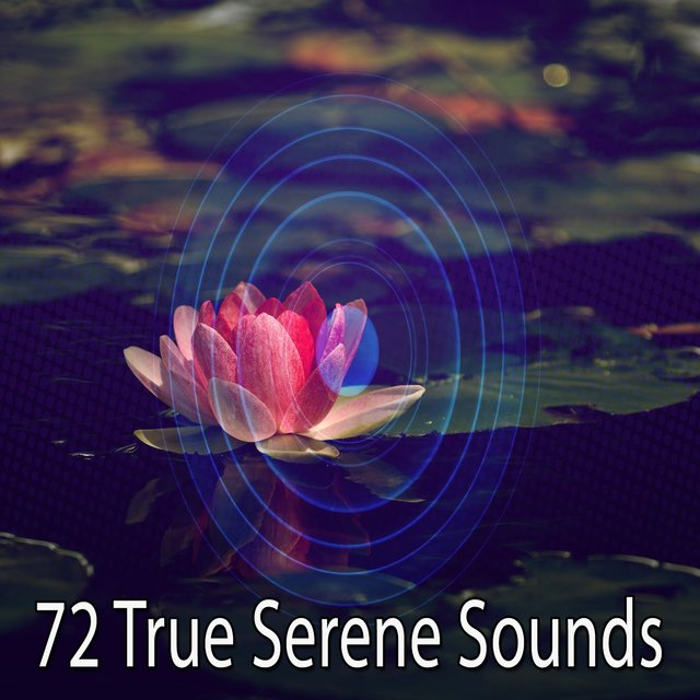 72 True Serene Sounds