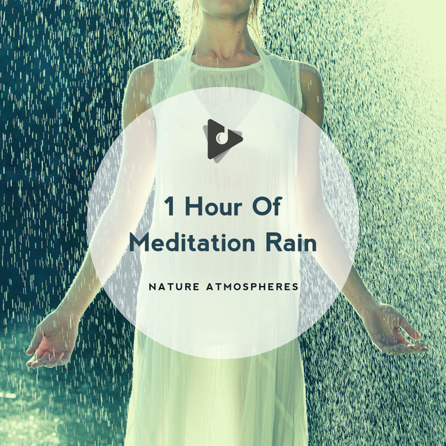 1 Hour Of Meditation Rain