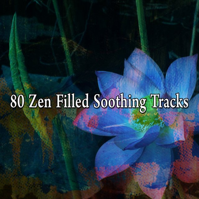 80 Zen Filled Soothing Tracks
