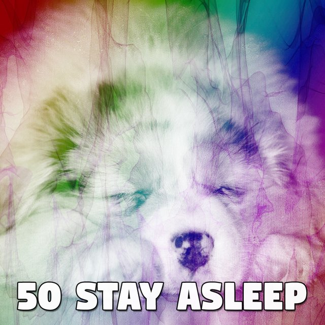 50 Stay Asleep