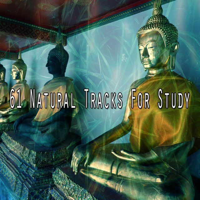 61 Natural Tracks for Study