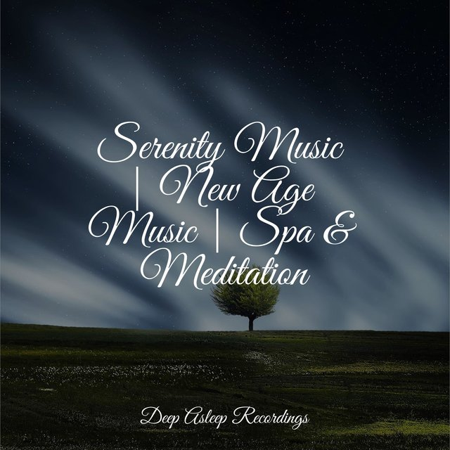 Serenity Music | New Age Music | Spa & Meditation