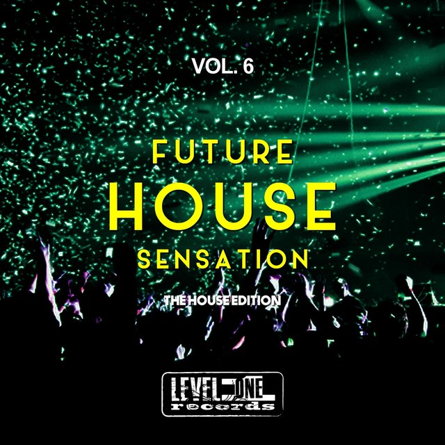 Future House Sensation, Vol. 6 (The House Edition)