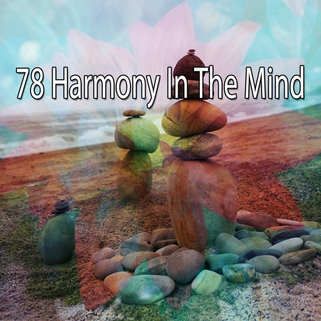 78 Harmony in the Mind