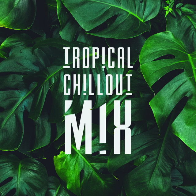 Tropical Chillout Mix: Chillout Vibes, Compilation of Best 2019 Sunny Beats, Deep Relax, Summer Music