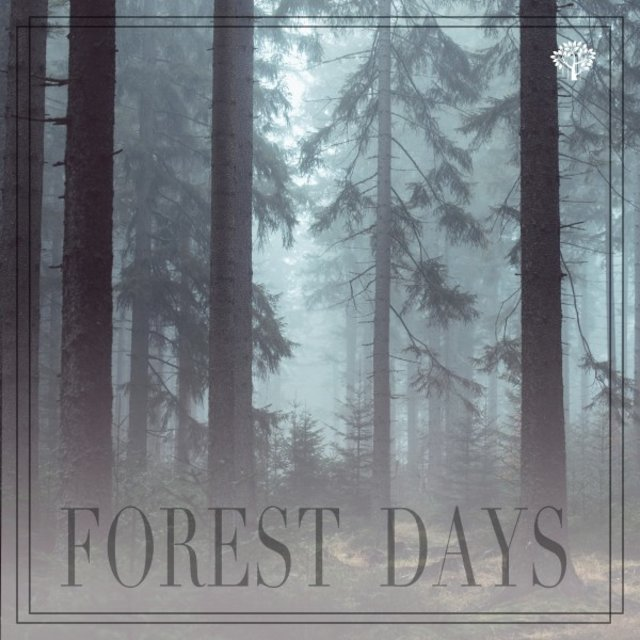 Forest Days