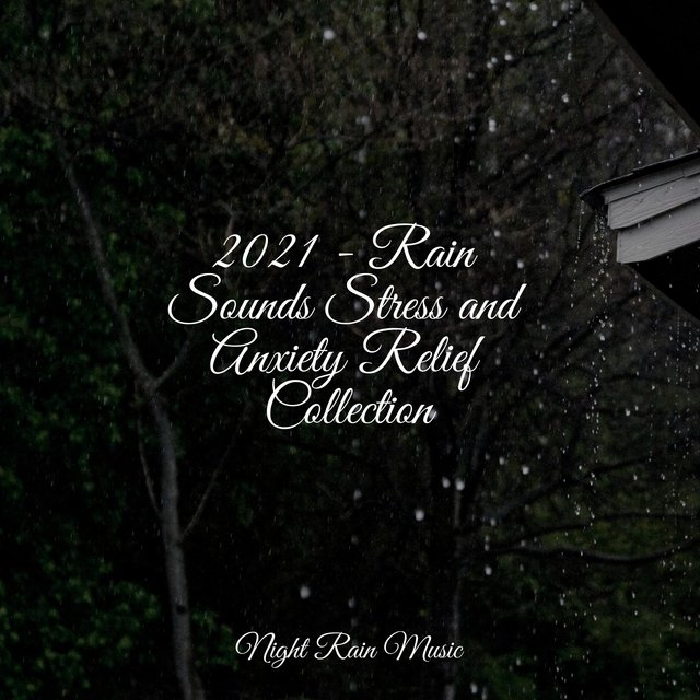 2021 - Rain Sounds Stress and Anxiety Relief Collection