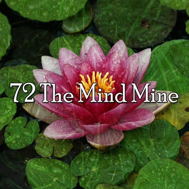 72 The Mind Mine