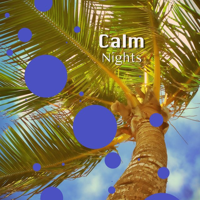 Calm Nights